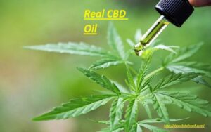 Does CBD Oil Work